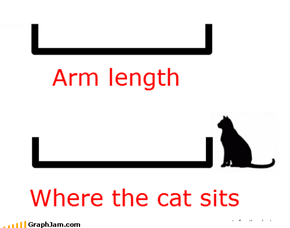 You Know the Cat Does it on Purpose