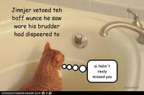 Jinnjer vetoed teh baff wunce he saw ware his brudder had dispeered to