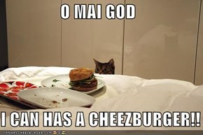 O MAI GOD  I CAN HAS A CHEEZBURGER!!