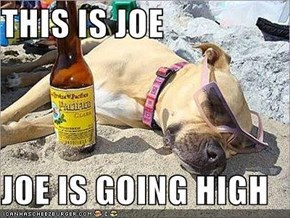 THIS IS JOE  JOE IS GOING HIGH