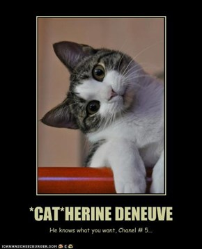*CAT*HERINE DENEUVE