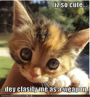 iz so cute...  ....dey clasify me as a weapon