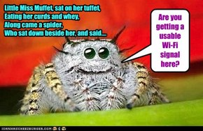 Little Miss Muffet, sat on her tuffet,  Eating her curds and whey, Along came a spider,  Who sat down beside her, and said....