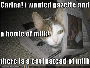 Carlaa! i wanted gazette and  a bottle of milk!  there is a cat instead of milk