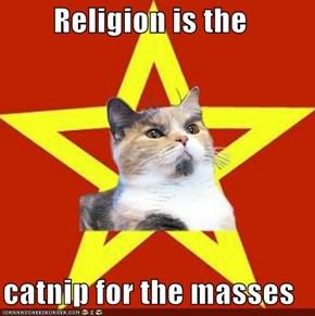 Lenin Cat: Promises of Sunspots