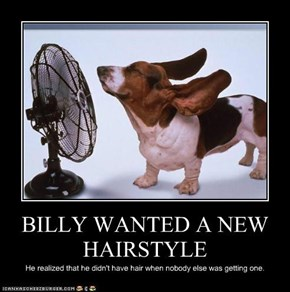 BILLY WANTED A NEW HAIRSTYLE