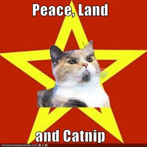 Peace, Land  and Catnip