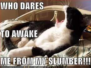 WHO DARES TO AWAKE ME FROM MY SLUMBER!!!