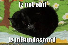 Iz not ebil  Iz mizundastood