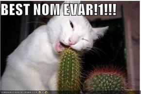 BEST NOM EVAR!1!!!