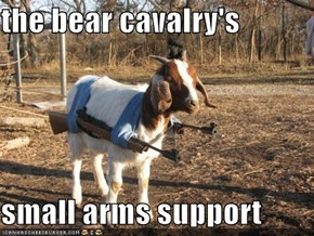 the bear cavalry's  small arms support