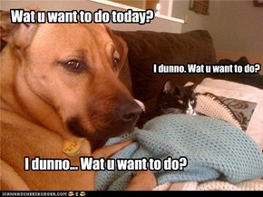 Wat u want to do today?