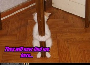 They will nevr find me here...