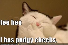 tee hee i has pudgy cheeks.