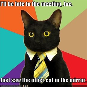 I'll be late to the meeting, Joe.  Just saw the other cat in the mirror.