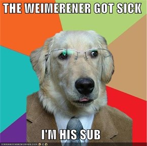 THE WEIMERENER GOT SICK  I'M HIS SUB