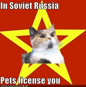 In Soviet Russia  Pets license you