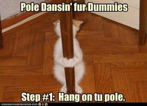 Step bai step:How tu Pole Danse