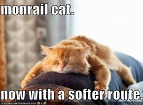 monrail cat.  now with a softer route.