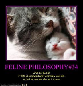 FELINE PHILOSOPHY#34