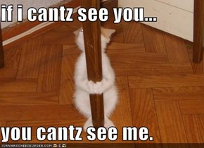 if i cantz see you...  you cantz see me.