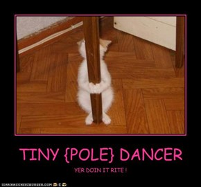 TINY {POLE} DANCER