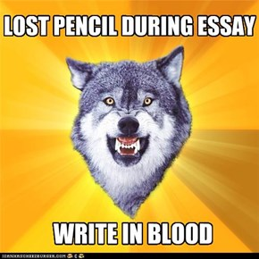 LOST PENCIL DURING ESSAY