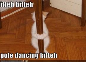 itteh bitteh  pole dancing kitteh