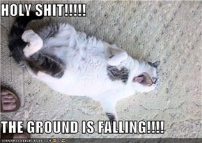 HOLY SHIT!!!!!  THE GROUND IS FALLING!!!!