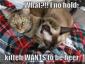 What?!! I no hold...  ...kitteh WANTS to be heer.
