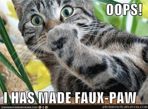 OOPS!  I HAS MADE FAUX-PAW