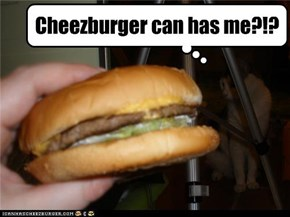 Cheezburger moment, part 2/2