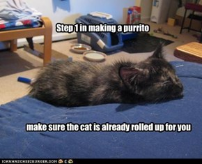 Step 1 in making a purrito