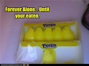 Where are his peeps? Oh right he don't have any!