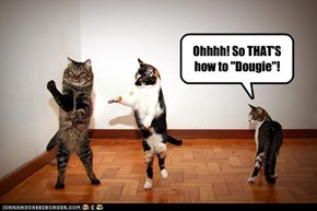 "Ohhhh! So THAT'S how to ""Dougie""!"