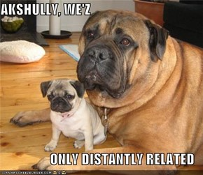 AKSHULLY, WE'Z  ONLY DISTANTLY RELATED