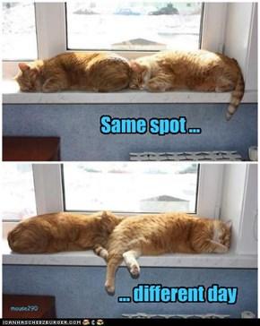 Same spot ...