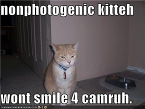 nonphotogenic kitteh  wont smile 4 camruh.