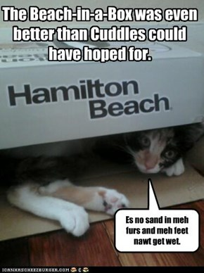 Beach-in-a-Box