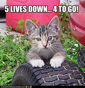 5 LIVES DOWN... 4 TO GO!