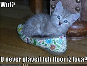 Wut?  U never played teh floor iz lava?