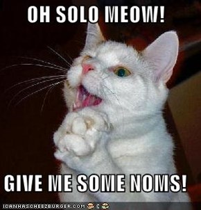 OH SOLO MEOW!    GIVE ME SOME NOMS!