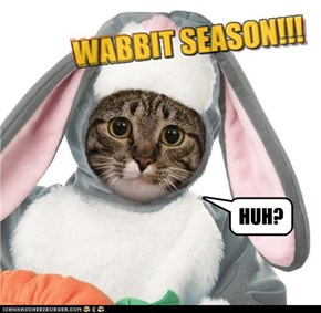 WABBIT SEASON!!!