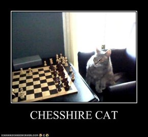 CHESSHIRE CAT