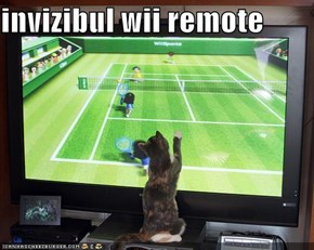 invizibul wii remote