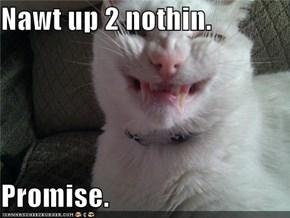 Nawt up 2 nothin.  Promise.