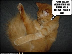 I PLAYS DED. DEY WOULDNT HIT DED KITTEH WIF A PILLOW......WOULD DEY?