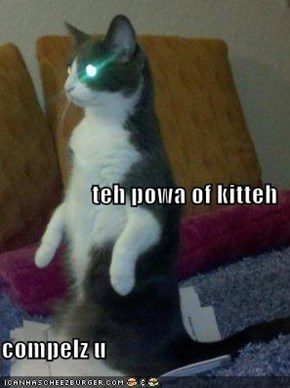 teh powa of kitteh compelz u