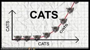 CatGraph