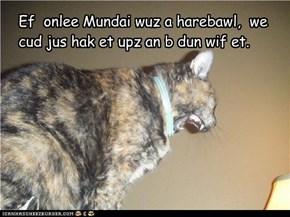 Ef  onlee Mundai wuz a harebawl,  we cud jus hak et upz an b dun wif et.